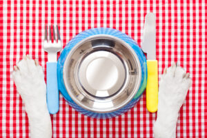Bowls and Feeding Utensils